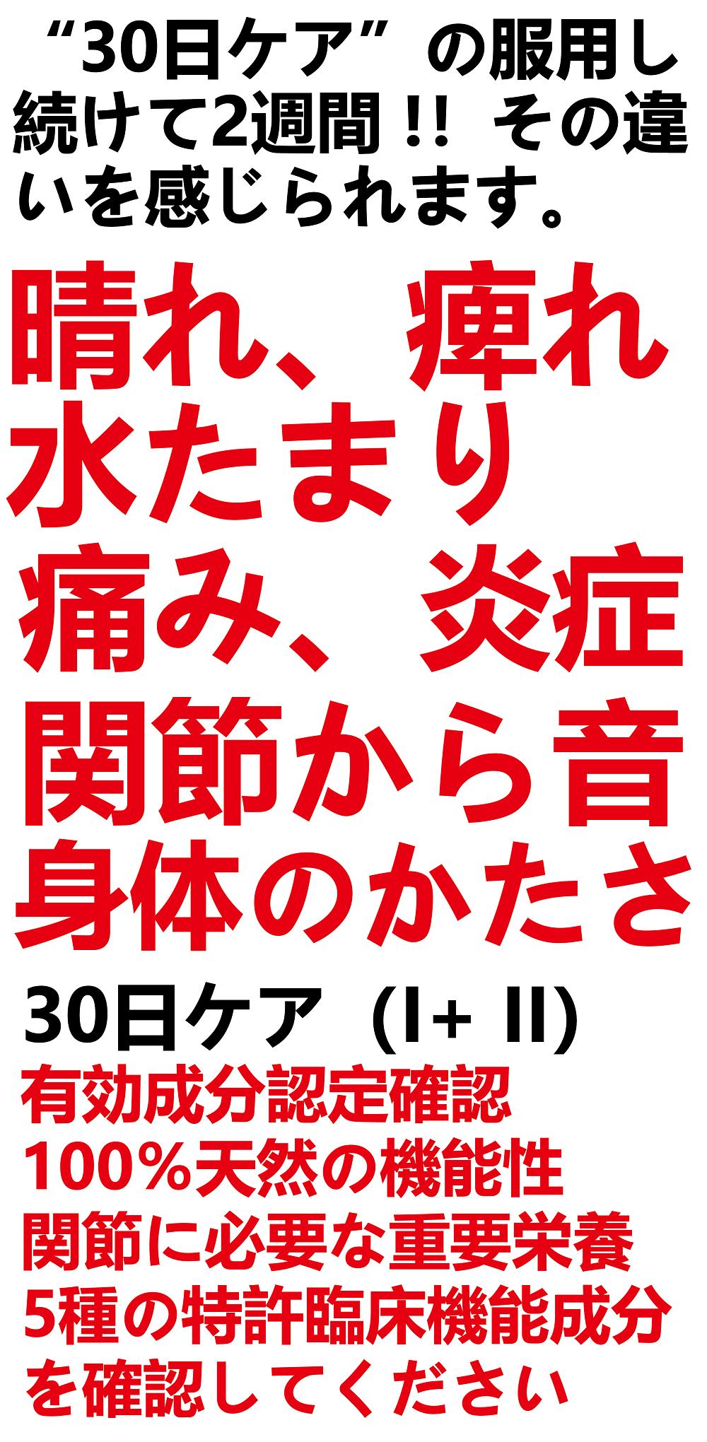 30days.JP Webpage.2.png